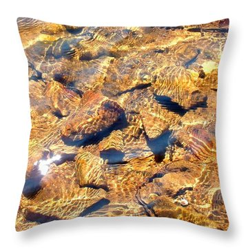 Throw Pillow featuring the photograph Golden Shallow Water And Rocks 1 by Becky Lupe