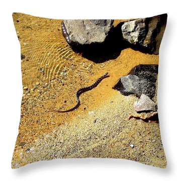 Throw Pillow featuring the photograph Golden Shallow Water Rocks And Snake 1 by Becky Lupe
