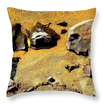 Throw Pillow featuring the photograph Golden Shallow Water Rocks And Snake 2 by Becky Lupe