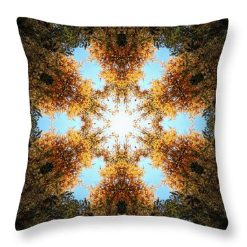 Golden Shimmer K2 Throw Pillow