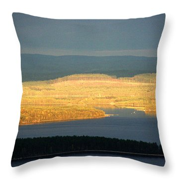 Golden Shores Throw Pillow