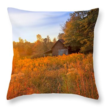 Golden Sunlight On A Fall Morning - North Georgia Throw Pillow by Mark E Tisdale