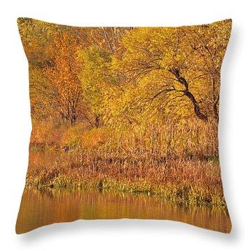 Golden Sunrise Throw Pillow by Elizabeth Winter