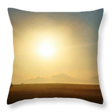 Throw Pillow featuring the photograph Golden Sunset by Judy Palkimas