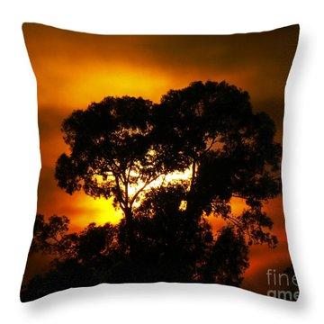 Golden Sunset... Throw Pillow