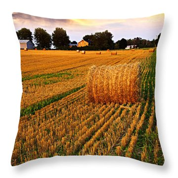 Golden Sunset Over Farm Field With Hay Bales Throw Pillow by Elena Elisseeva
