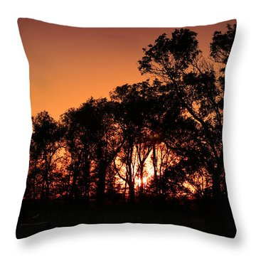 Golden Sunset Throw Pillow by Rebecca Davis