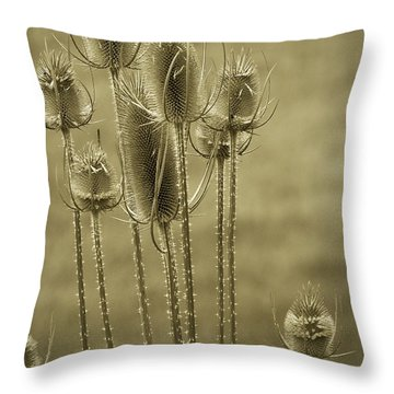 Golden Thistles Throw Pillow
