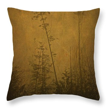 Throw Pillow featuring the photograph Golden Trees In Winter by Peggy Collins