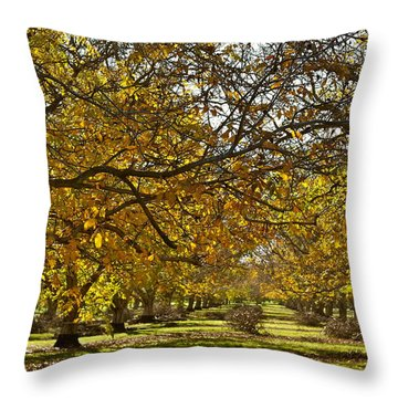Golden Walnut Orchard Throw Pillow by Michele Myers