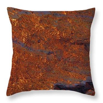 Golden Waters Throw Pillow