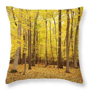 Golden Woods Throw Pillow