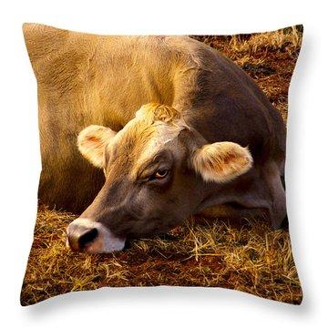 Goldeneye Throw Pillow by Robert Geary