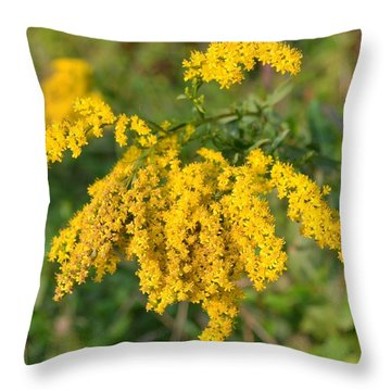 Throw Pillow featuring the photograph Goldenrod by Mary Zeman