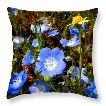 Goldfields And Baby Blue Eyes In Park Sierra-ca Throw Pillow by Ruth Hager