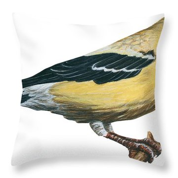 Goldfinch  Throw Pillow by Anonymous