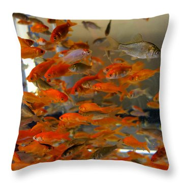 Goldfish Throw Pillow by Diane Lent