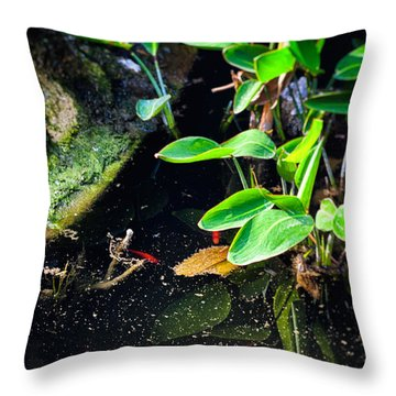 Throw Pillow featuring the photograph Goldfish In Pond by Silvia Ganora