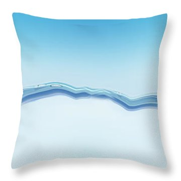 Goldfish Wearing Shark Fin Throw Pillow by Panoramic Images
