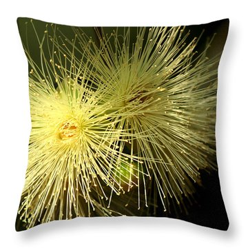 Goldilocks Throw Pillow by Ramabhadran Thirupattur