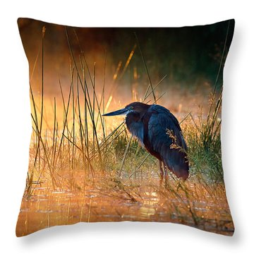 Goliath Heron With Sunrise Over Misty River Throw Pillow