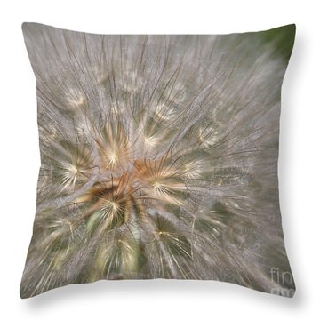Gone To Seed Throw Pillow by Marty Fancy
