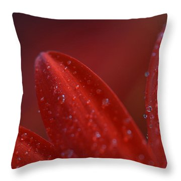 Throw Pillow featuring the photograph Gone Too Soon by Melanie Moraga