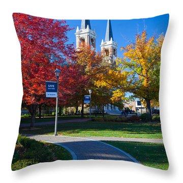 Gonzaga Pathway Throw Pillow