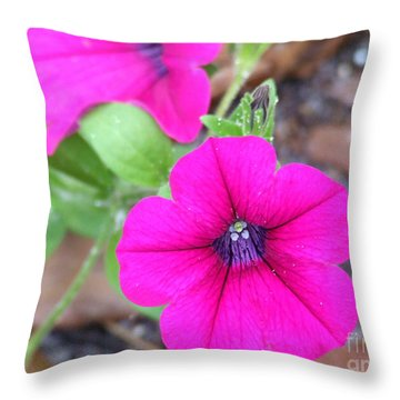 Throw Pillow featuring the photograph Good Morning by Andrea Anderegg