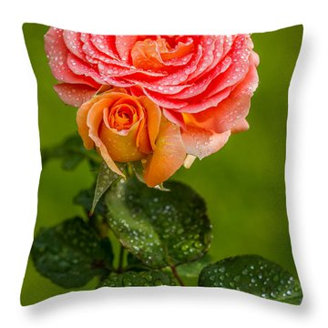 Throw Pillow featuring the photograph Good Morning Beautiful by Ken Stanback