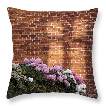 Throw Pillow featuring the photograph Good Morning by Inge Riis McDonald