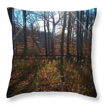 Throw Pillow featuring the photograph Good Morning by Pamela Clements