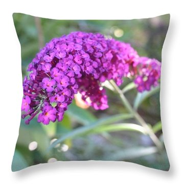 Good Morning Purple Butterfly Bush Throw Pillow