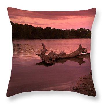 Good Morning Sacramento River Throw Pillow by Joyce Dickens