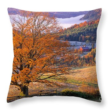 Throw Pillow featuring the photograph Good Morning Vermont by Alan L Graham