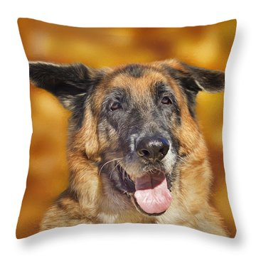 Good Old Boy Throw Pillow by Brian Cross