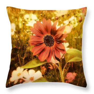 Vintage Cottage Garden Throw Pillow