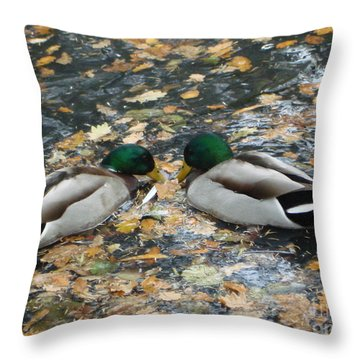 Throw Pillow featuring the photograph Good To Talk by Katy Mei