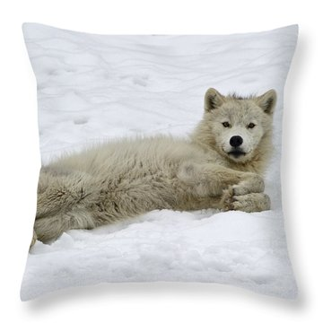 Good Wolfie ... Throw Pillow