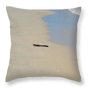Throw Pillow featuring the photograph Goodbye by Cassandra Buckley