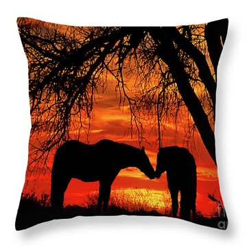Goodnight Kiss Throw Pillow by Barbara D Richards