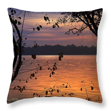 Throw Pillow featuring the photograph Goodnight Lake by Cindy Greenstein
