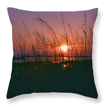 Goodnight Sun Throw Pillow
