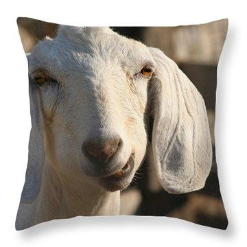 Goofy Goat Throw Pillow by Art Block Collections