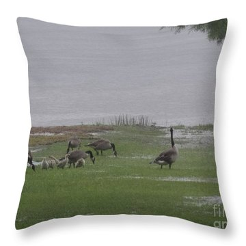 Goose Family Walk Throw Pillow by Joseph Baril