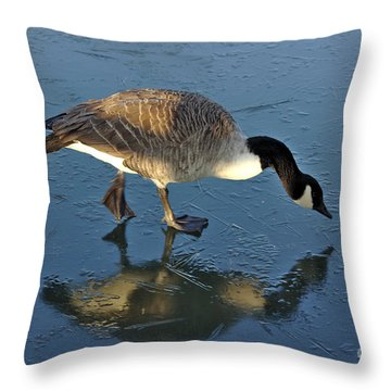 Goose On Ice Throw Pillow