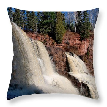 Gooseberry Falls Throw Pillow by James Peterson