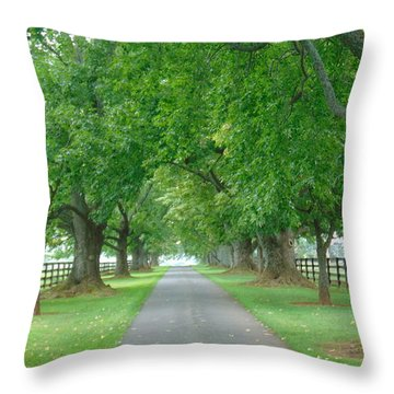 Take Me Home Throw Pillow by Charlotte Gray