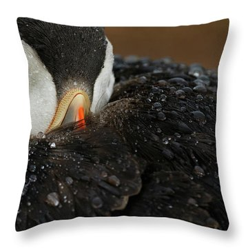 Puffin Throw Pillows