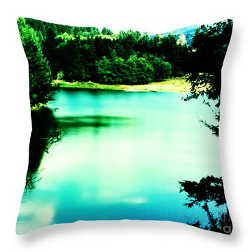 Gorge Waterway Victoria British Columbia Throw Pillow by Eddie Eastwood